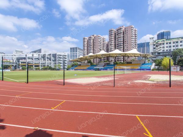 体育馆上海市卢湾体育中心4.jpg